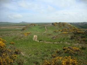 Clegyr Boia - settlement site.